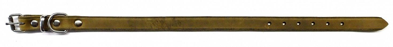 Obojek B&F ZUBR 14102Z khaki 40cm